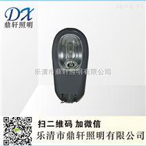 生产厂家ZGF617-250W防水防尘防腐马路灯
