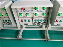 露天用防爆箱 防爆配电箱带防雨罩IP65厂家