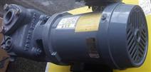 EBARA 40*32FSGD62.2泵